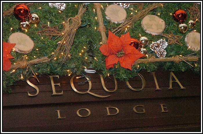 Disney's Sequoia lodges - Page 3 766596SQL_0019