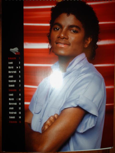 Portrait de Michael Jackson (jeune) 795028HPIM4337