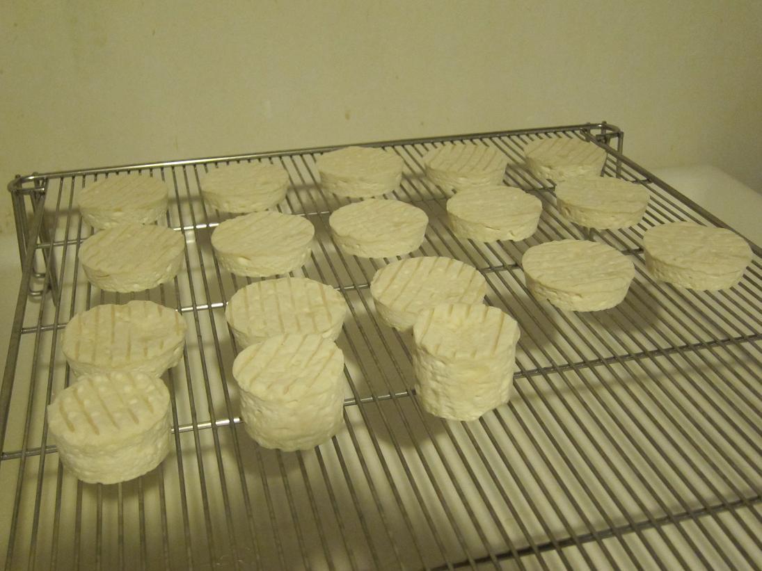Pour les accidents sur vos fromages !!! 800653IMG_0300