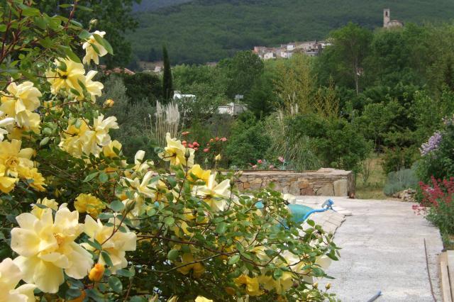 Mon jardin et moi... - Page 2 916792Nouvelles_photos_057
