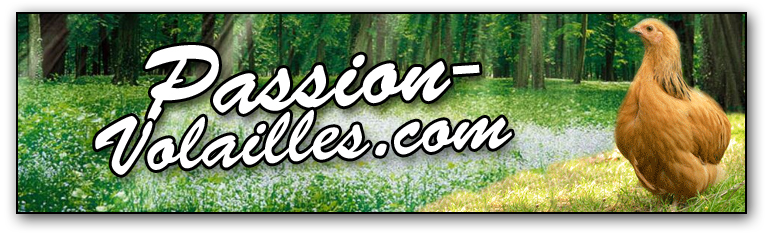 passion-volailles
