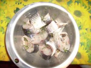 darnes de mulets grillé Mini_167122033
