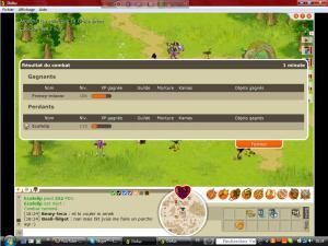 Le nouveau forum de dofus [MMORPG] vien d'ouvrir. - Vidéo Mini_840526Frenzy_vs_eca_119