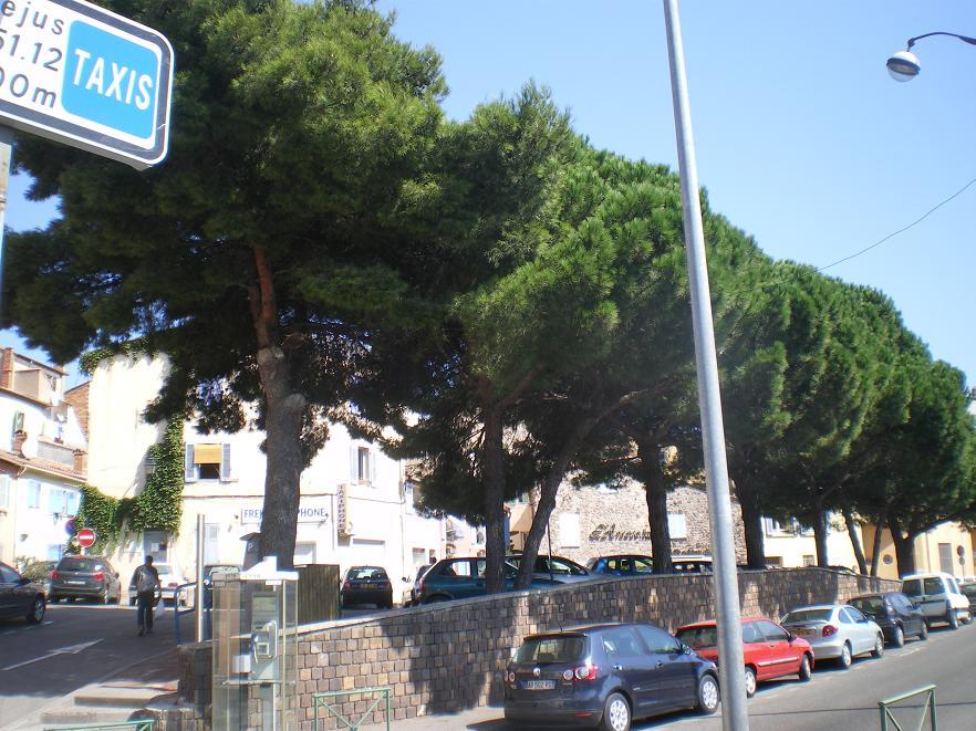 MEME LES ROMAINS SE SONT ARRETES A FREJUS ..ALORS LES PARISIENS !!! 873575IMGP7027