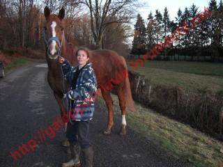 DEESSE GPLV - ONC selle née en 1989 -  adoptée en janvier 2011 par Maurice - Page 4 979709photos_janvier_2010_251