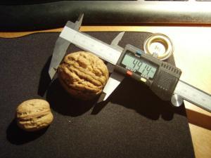 TOOT TOOT! remorqueur coquille de noix Mini_570370IMGP0877