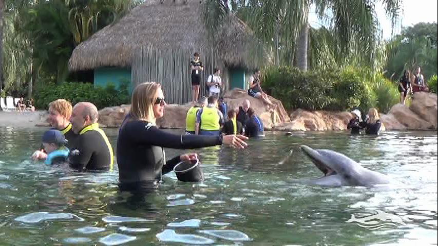 Florida, Fall 2013 - 25 days, 10 theme parks, Sun, Fun & More - Page 13 Tq9i