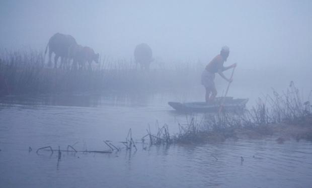 Sương sớm vùng quê T4aw