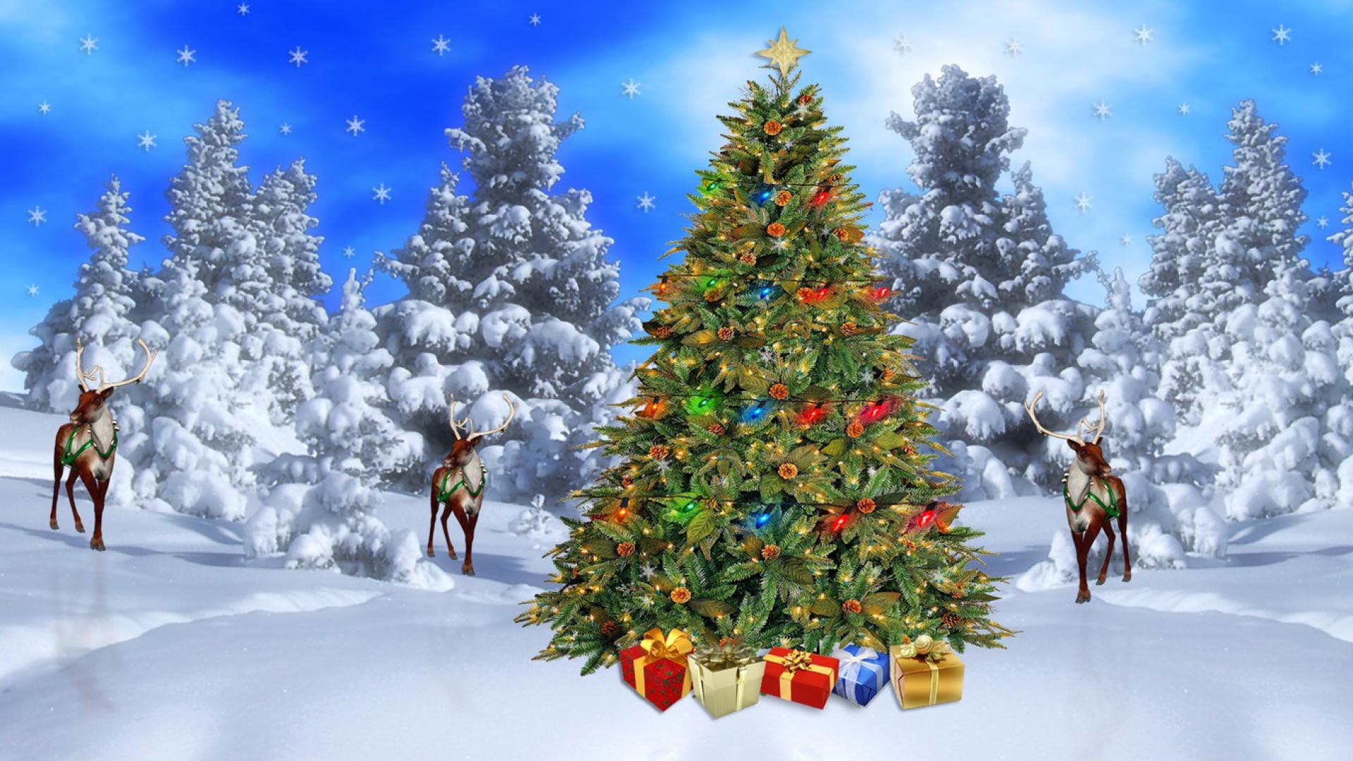 Bộ Sưu Tập Ảnh Giáng Sinh - Page 5 112in