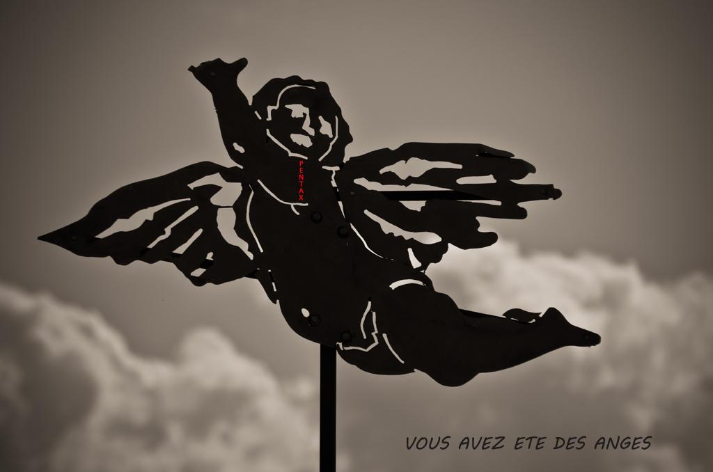 Bienvenue à la sortie anniv Lille  - Page 3 12052012jmc4617web