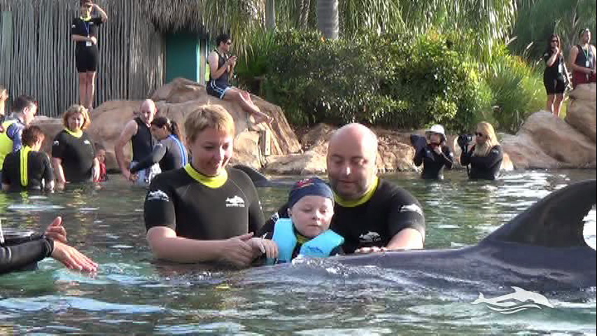 Florida, Fall 2013 - 25 days, 10 theme parks, Sun, Fun & More - Page 13 88k9