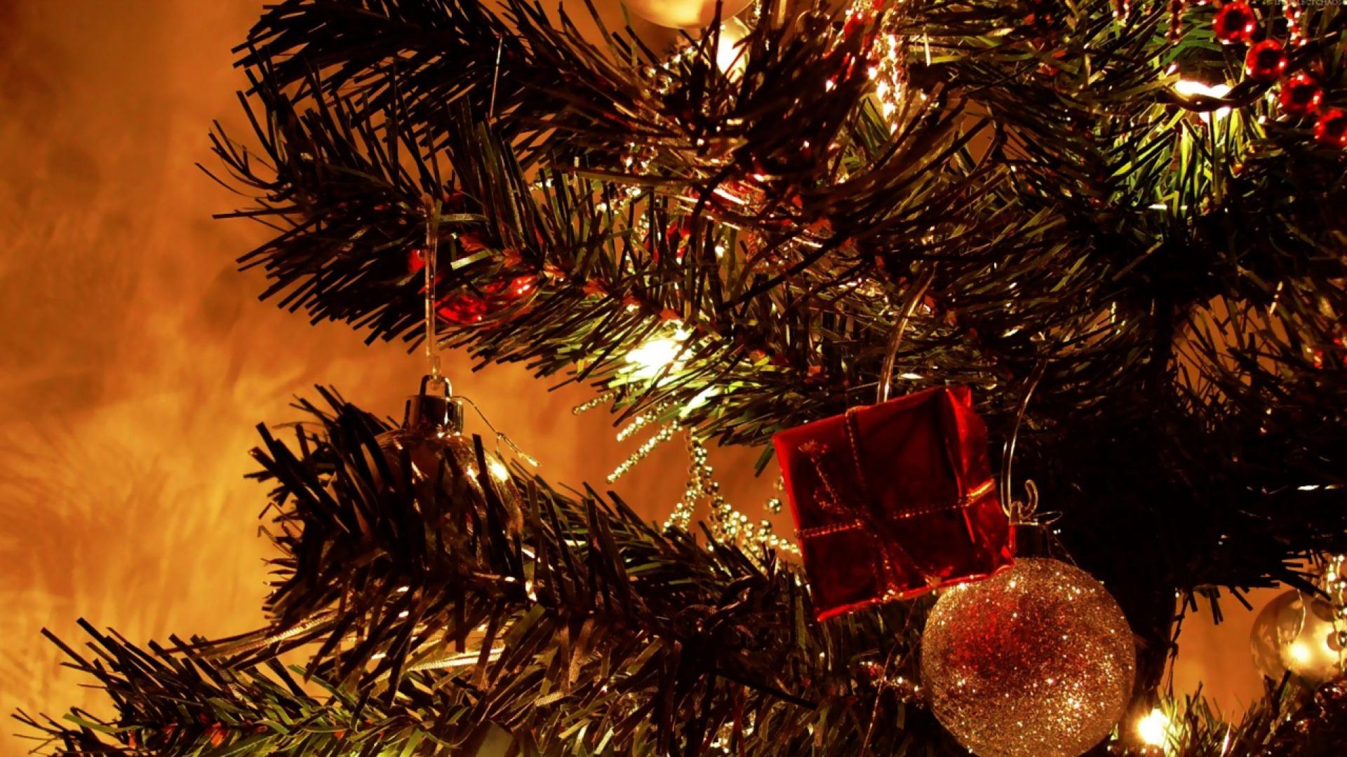 Bộ Sưu Tập Ảnh Giáng Sinh - Page 4 Christmaseve5
