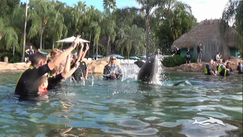 Florida, Fall 2013 - 25 days, 10 theme parks, Sun, Fun & More - Page 13 Cnvj