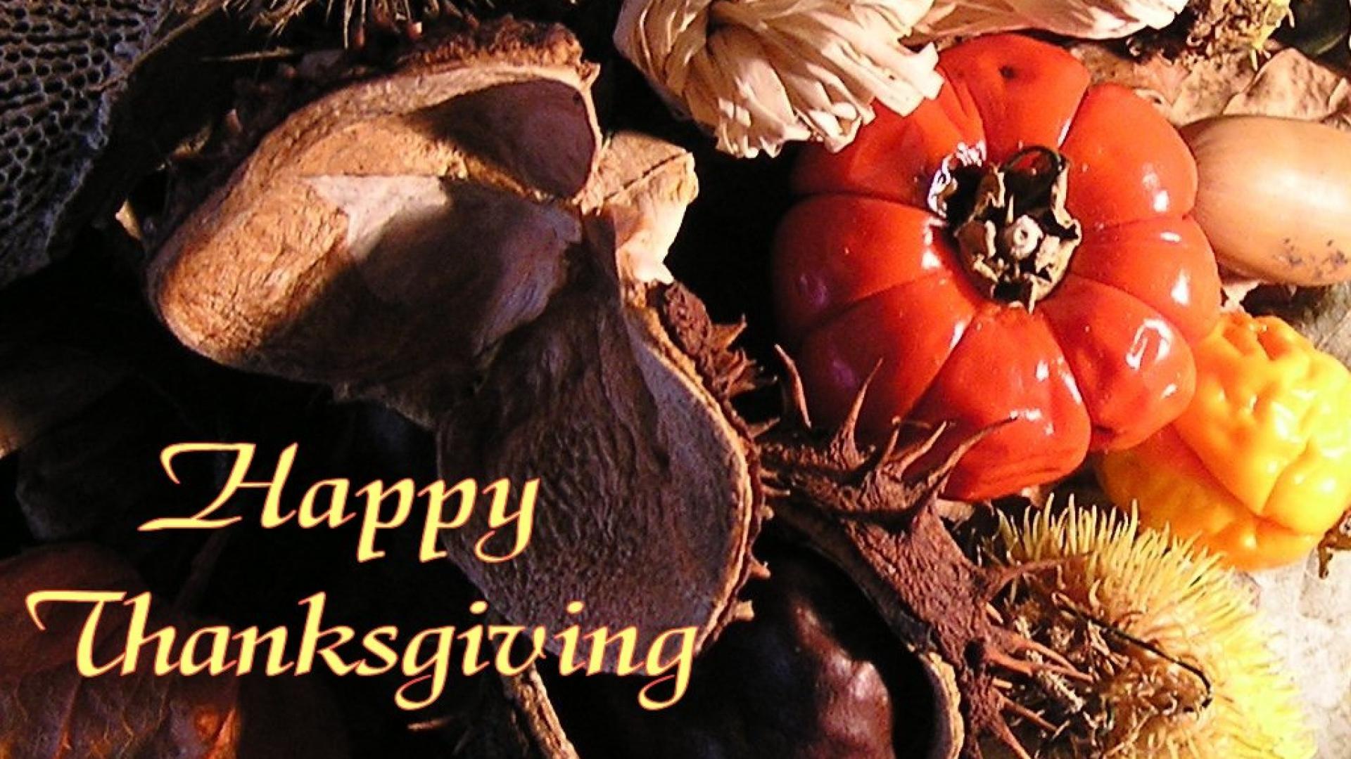 Hình nền Thanksgiving 83913399