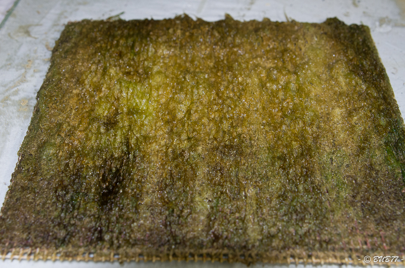 DIY - Fabrication d'un ATS Algae Turf Scrubber Oc2m