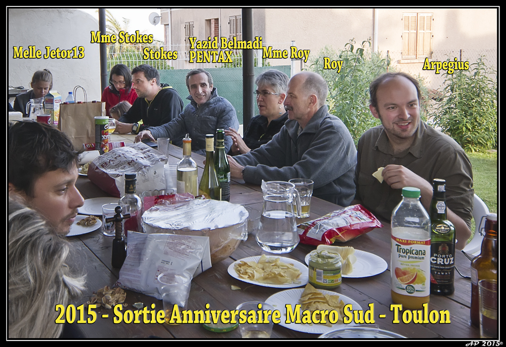 Sortie Anniversaire Toulon - Photos des 5èmes Rencontres Macro du Sud (2015) - Page 6 Poii2V