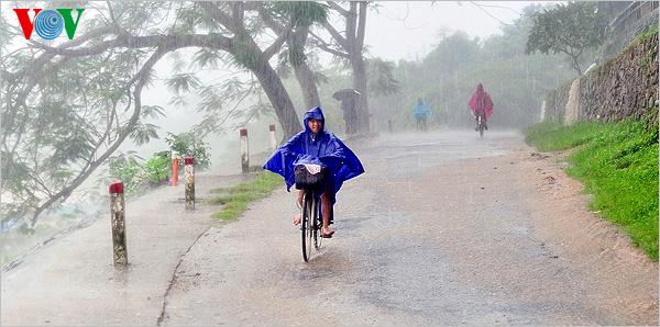 Xứ Huế ngày mưa 28419900