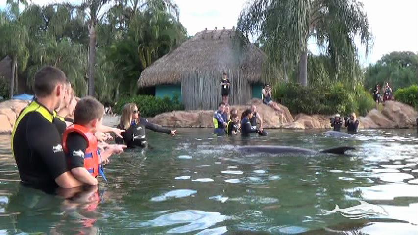 Florida, Fall 2013 - 25 days, 10 theme parks, Sun, Fun & More - Page 13 51hv