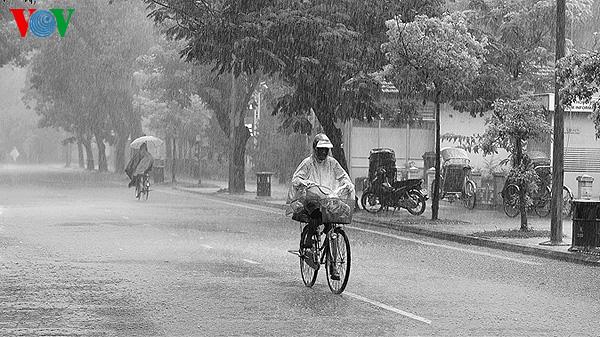 Xứ Huế ngày mưa 79426252