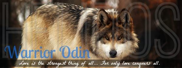 Roaming Odin BCUcLM