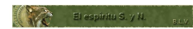 00. El Espíritu del SyN.