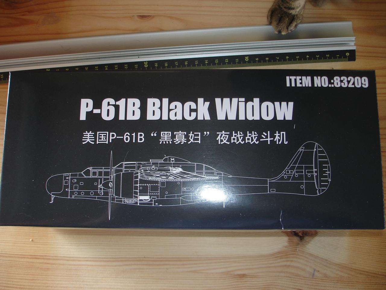P-61 B Black Widow Hobby Boss 018fr