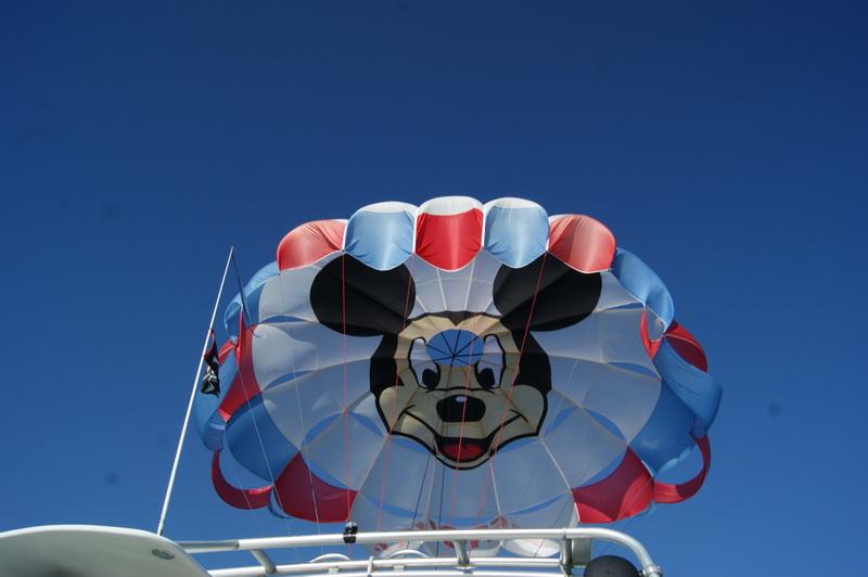 Florida, Fall 2013 - 25 days, 10 theme parks, Sun, Fun & More - Page 19 6i32