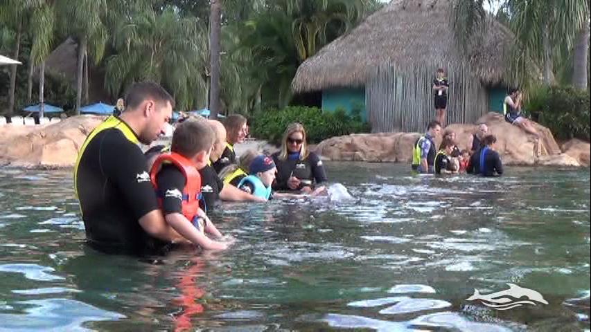 Florida, Fall 2013 - 25 days, 10 theme parks, Sun, Fun & More - Page 13 7zc5