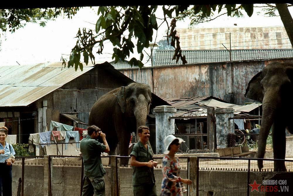 Sài Gòn 1970-1971 đẹp cổ kính 68993377