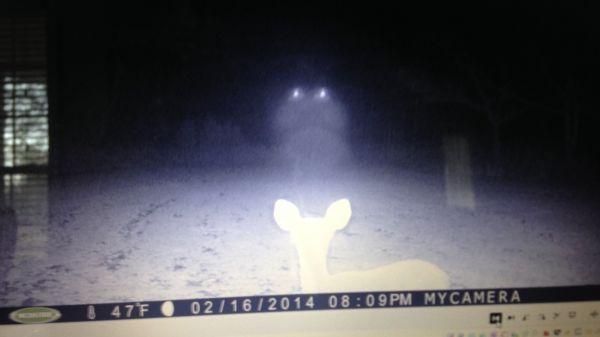 Vidéo étrange dans le Mississippi  F1m6