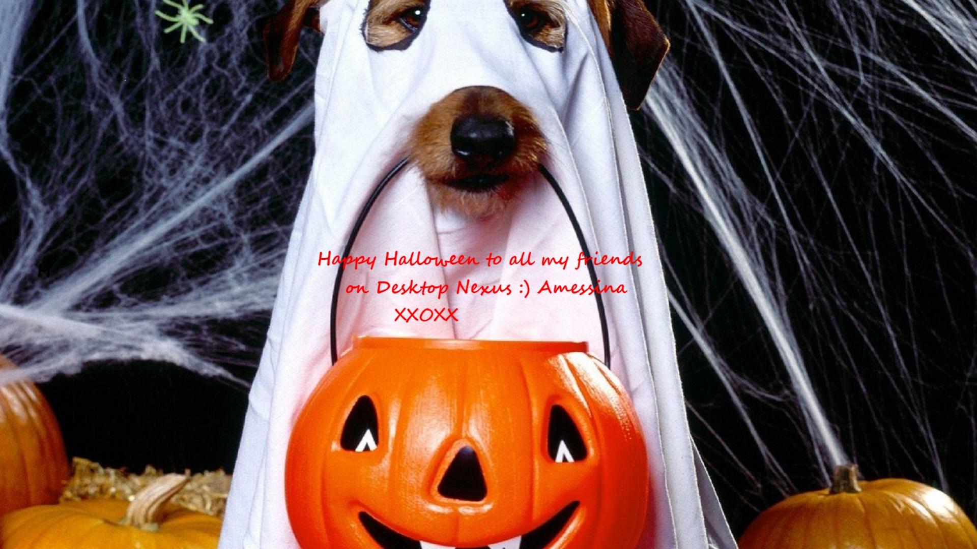 Hình nền Halloween 00511f