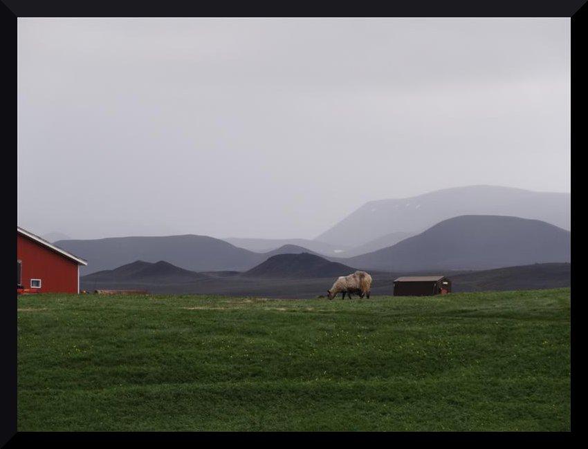 [ISLANDE] La grande aventure íslanðaíse des Crítícákouátíque - juillet 2013 Xxg7
