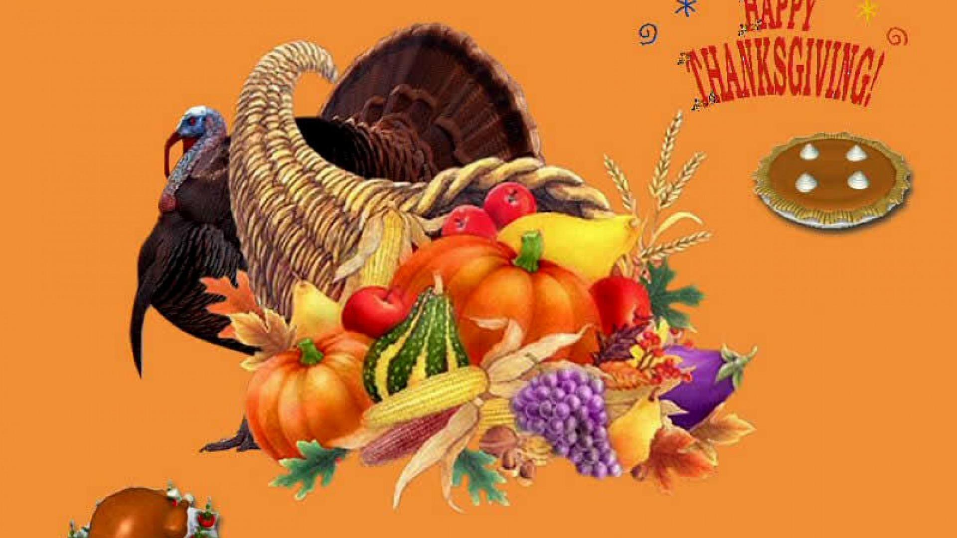 Hình nền Thanksgiving 50230636