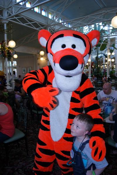 Florida, Fall 2013 - 25 days, 10 theme parks, Sun, Fun & More - Page 19 Qlqz