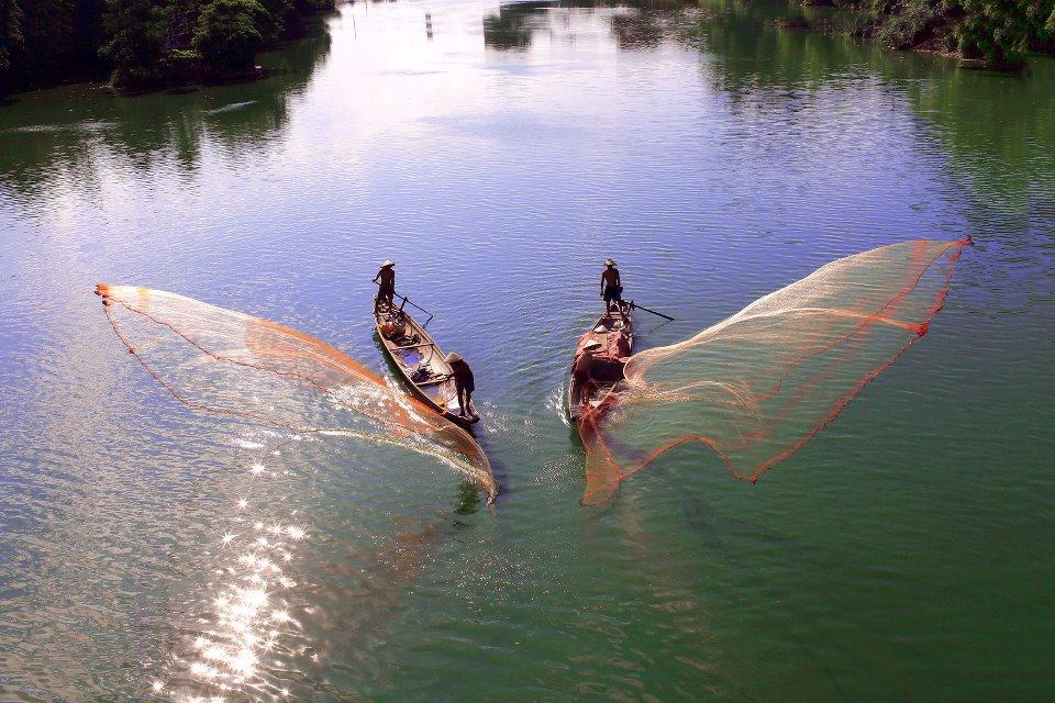 Tung chài trên sông Huế Tk6s
