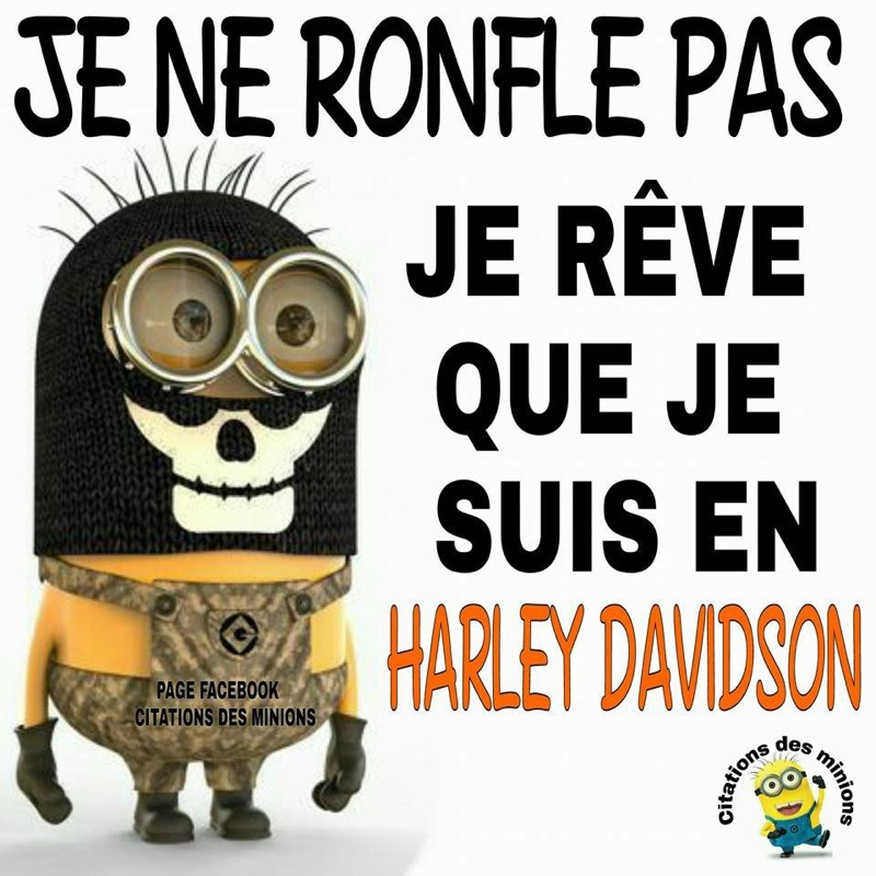 Humour en image du Forum Passion-Harley  ... - Page 3 Kuh41h