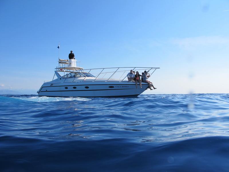 """Dauphins, baleines en Méditéranée et Aquascope """"Black & White"""" ZY0IFh"""