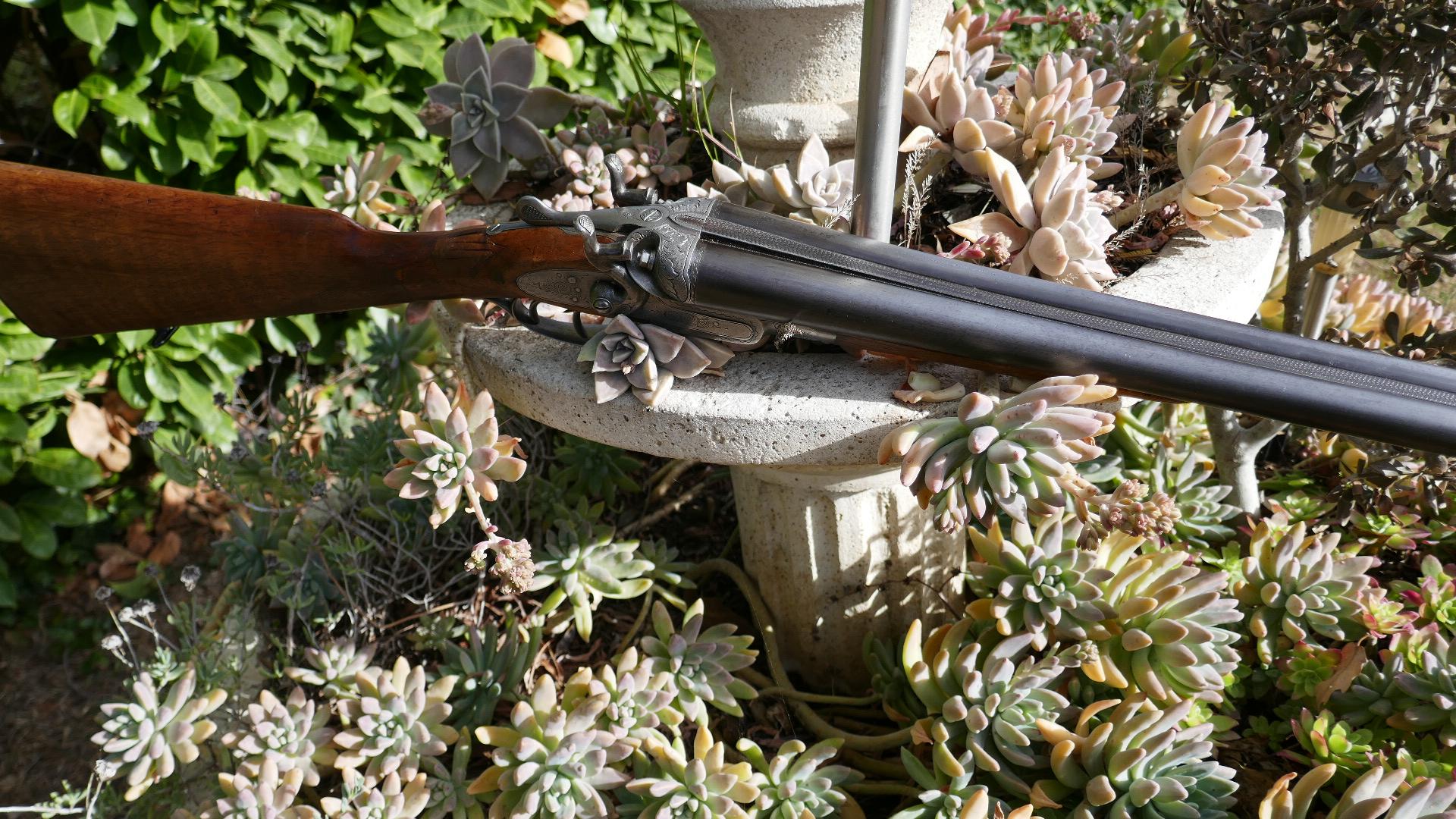 Questions sur fusil de chasse  83STdY
