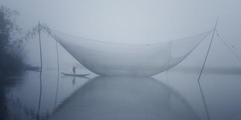 Sương sớm vùng quê Zu9a