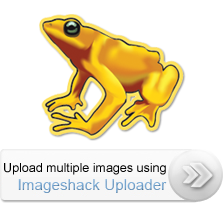 Alternativa a Imageshack Windowsuploader