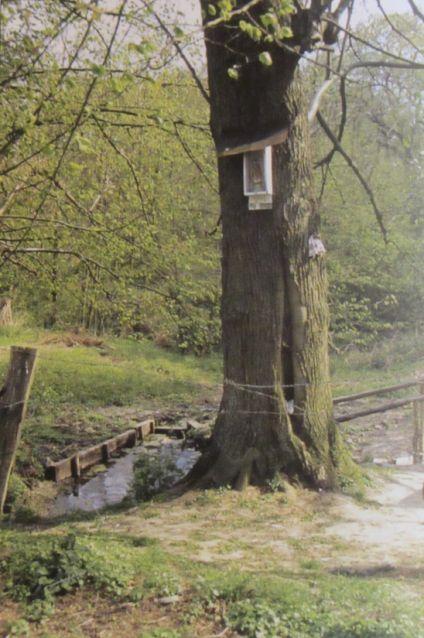 Kapellen van Frans-Vlaanderen - Pagina 3 Pg0r