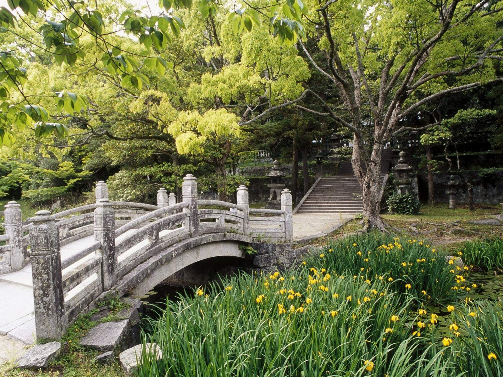 Japan Nature Wallpapers Hagicastlegardenwesterng