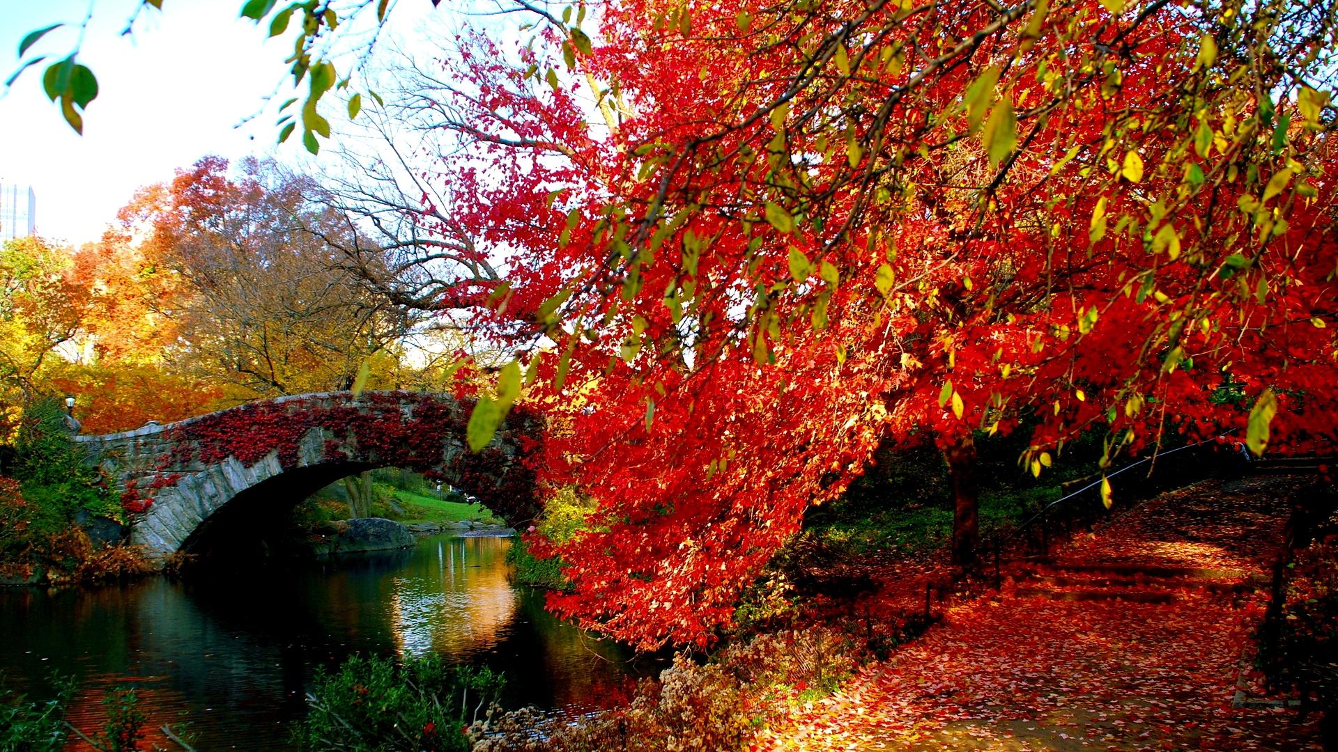 Hình nền mùa thu Autumn7c