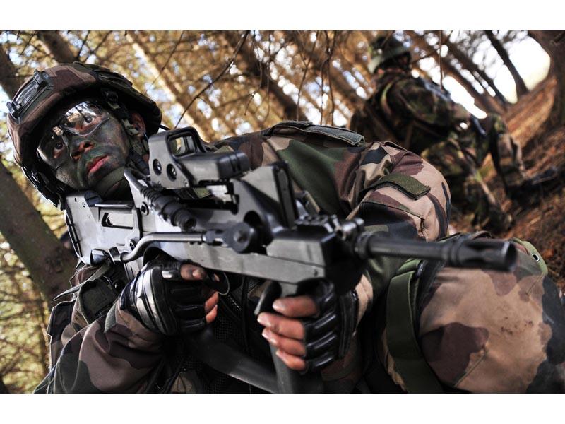 Armée Française / French Armed Forces Land2012040004
