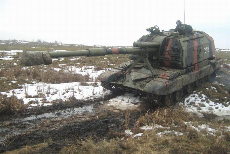 Ukrainian Armed Forces / Zbroyni Syly Ukrayiny 20110114475621511043006