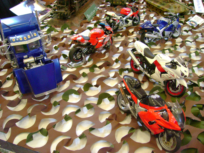 Expo maquettes La Destrousse Dsc00253ip