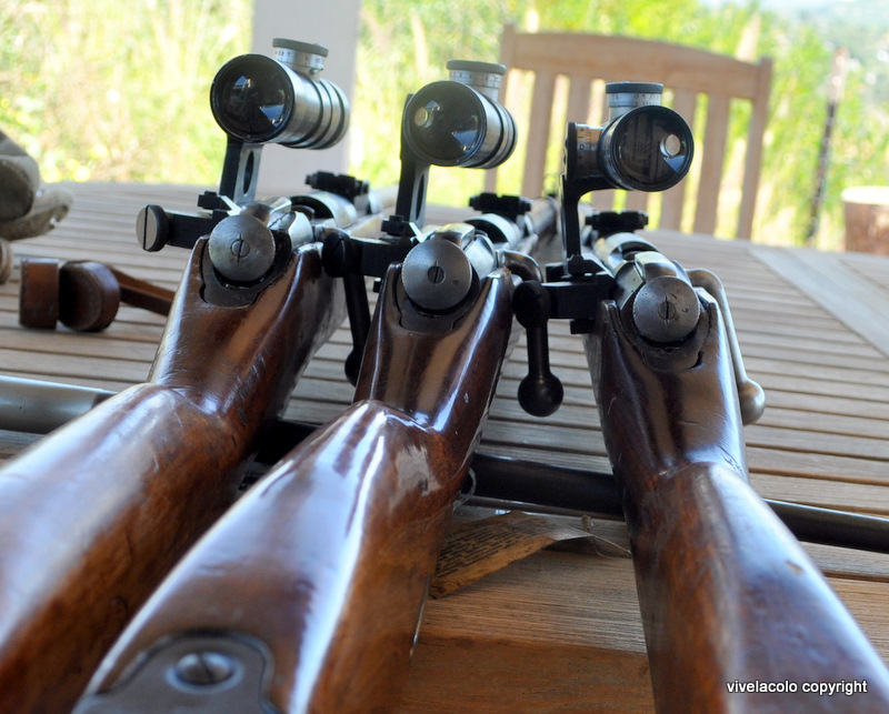 Mosin Nagant PU sniper Dsc0963v