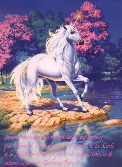 Bonne année 2011 !!! ;-) Arbresenfleur