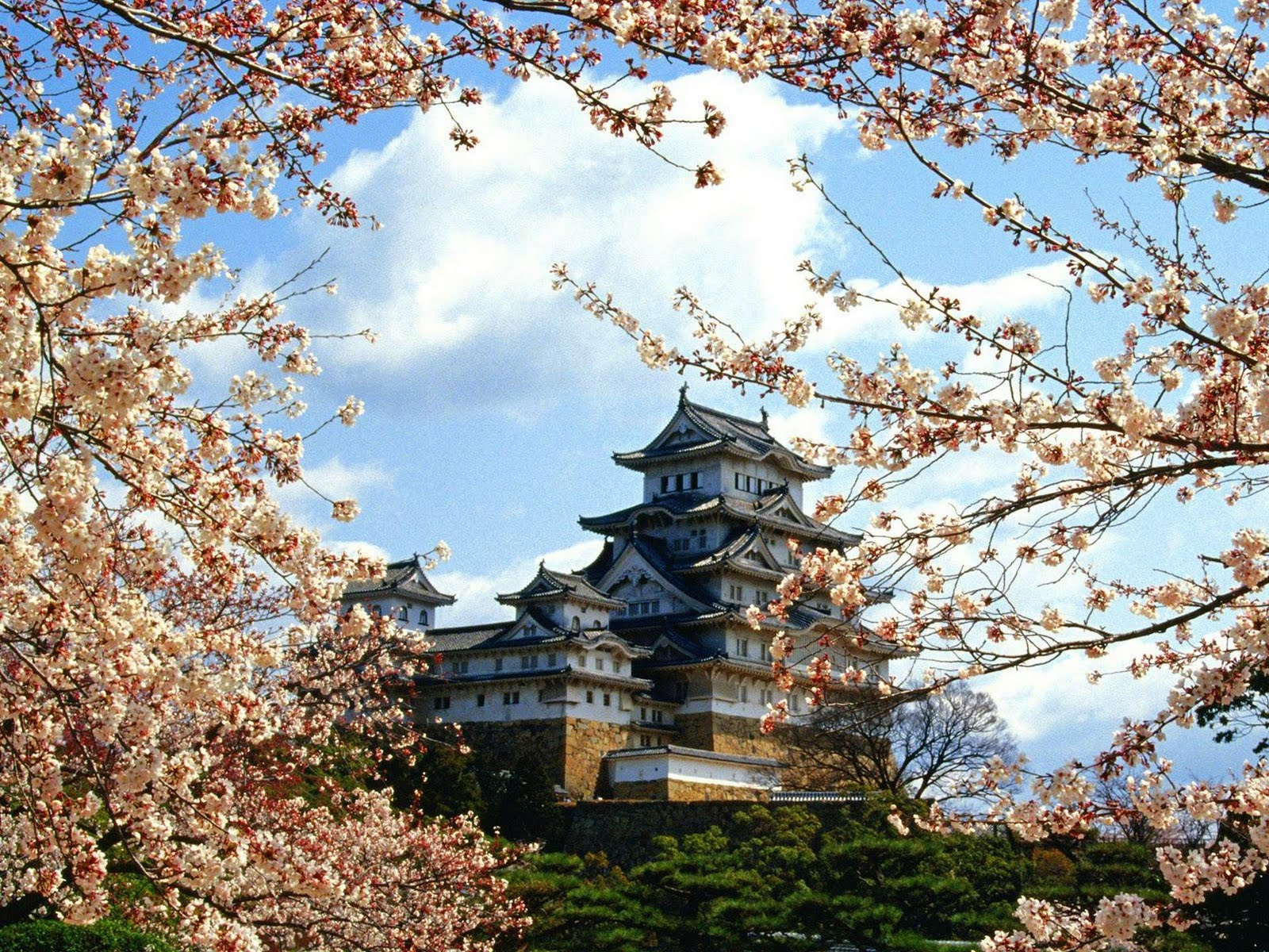 Japan Nature Wallpapers Himejijocastlehimejikin