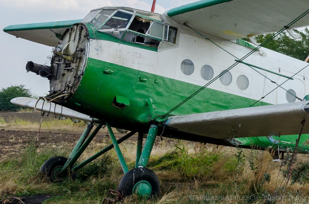 Antonov An-2 - Pagina 24 5fv9